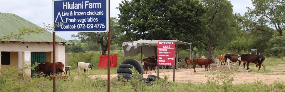african-internet-cafe
